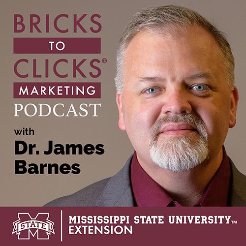 Bricks-to-Clicks Marketing Podcast Graphic